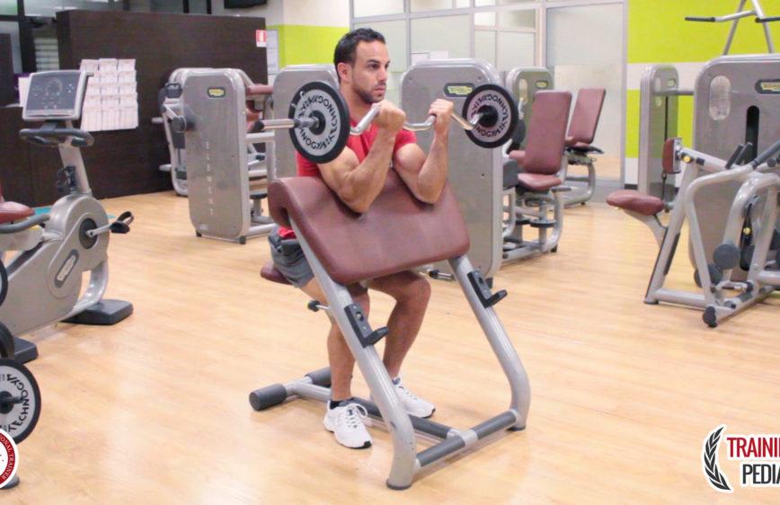 Esercizi trainingpedia - Panca scott a casa ...